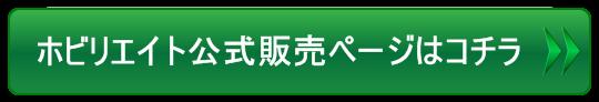btn4_green_0_L.png